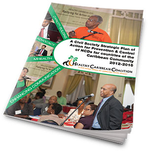 HCC Strategic Plan 2012-2016, A Civil Society Strategic Plan