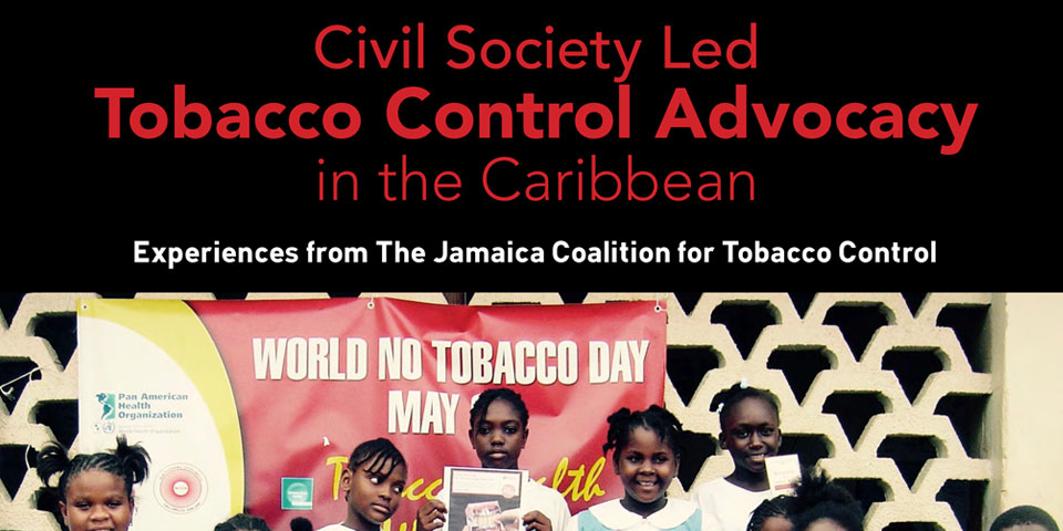 Civil Society Led in the Caribbean Experiences