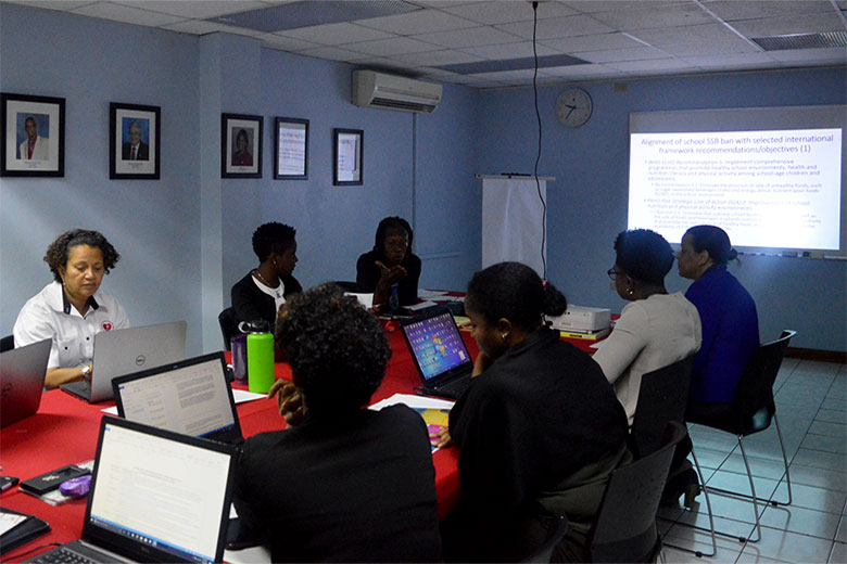 CDB Grant Funded CSO Capacity Building Workshop Moves on to Jamaica