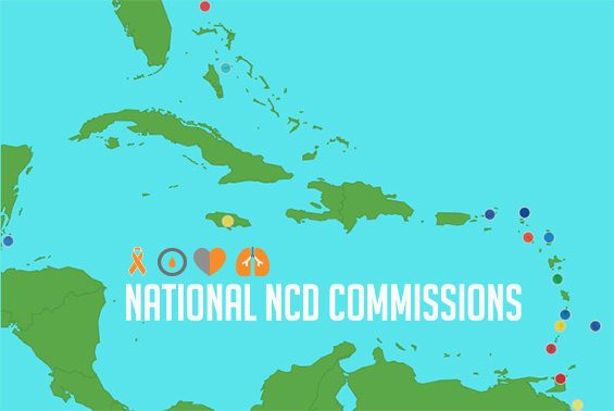 The 1st Meeting of Regional Network of Chairs of CARICOM NNCDCs