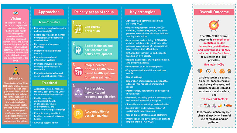 Snapshot of the TNA-NCDs